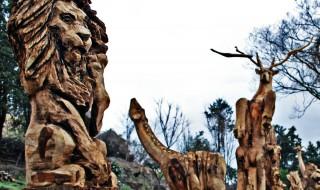 立ち木ライオン_1